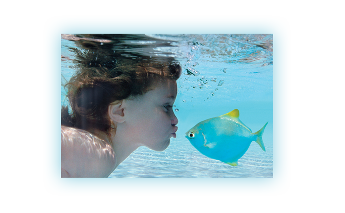 Swimming pool water treatment and aquaculture products - Swimming pool water treatment chemicals ...